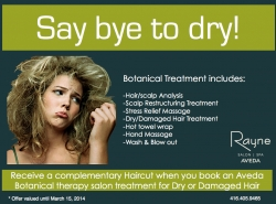 Say Bye to Dry at Rayne Salon & Spa